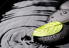 井戸水や雨水